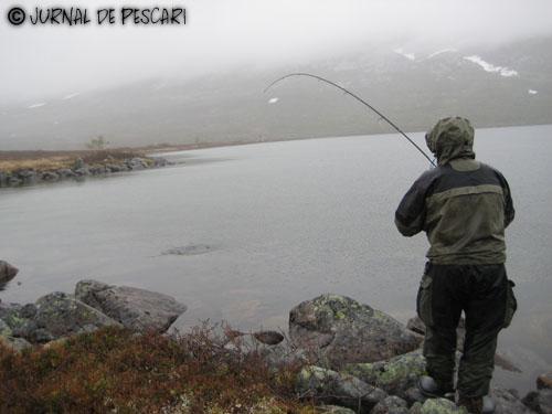 norvegia09